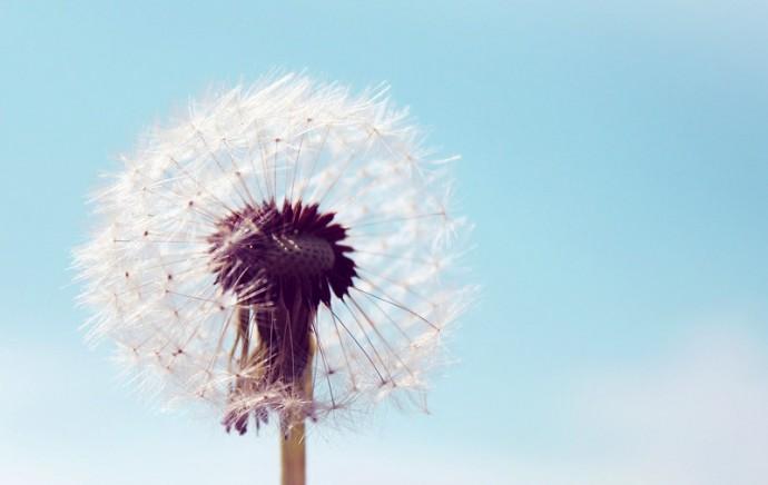 Cómo Mejorar La Sensibilidad Del Pene y Del Glande