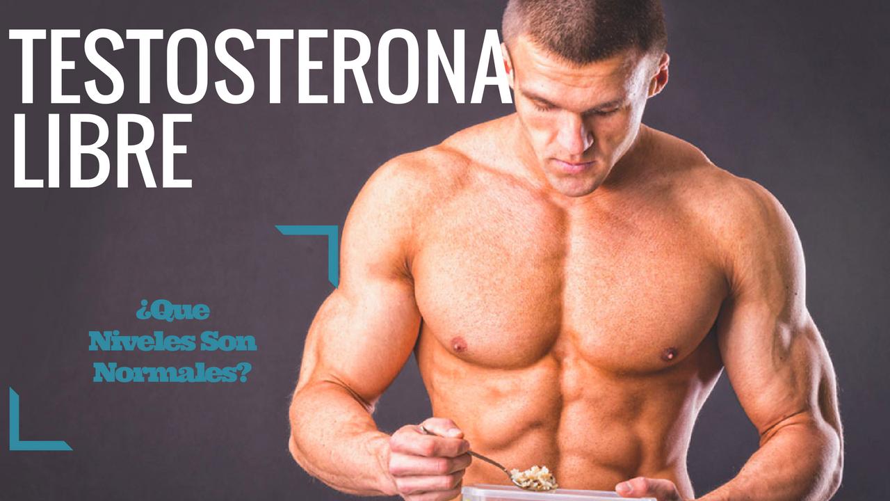 Niveles Ideales De Testosterona Libre ¿Cual Es El Valor Que Deberías De Tener?